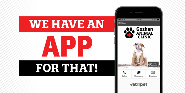 Download Our Pet Care App