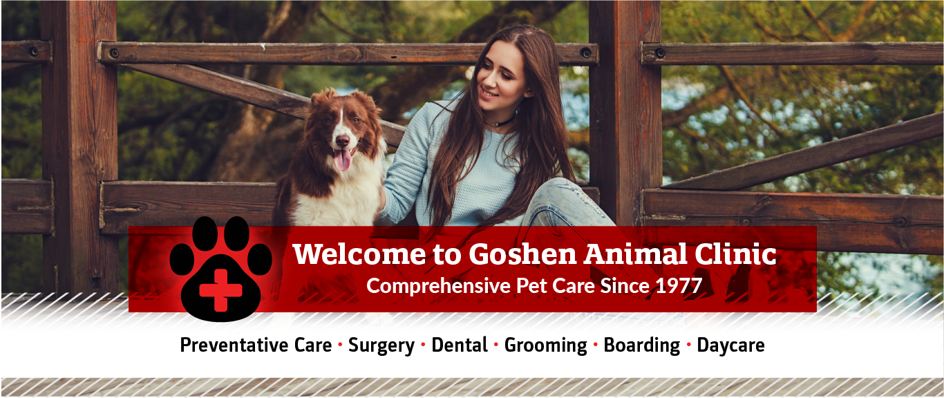 Welcome to Goshen Animal Clinic