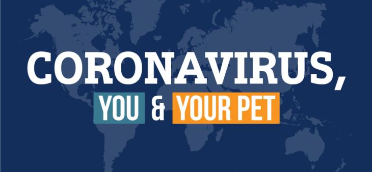 Coronavirus And Pets – Vet In Prospect, KY – Goshen Animal Clinic