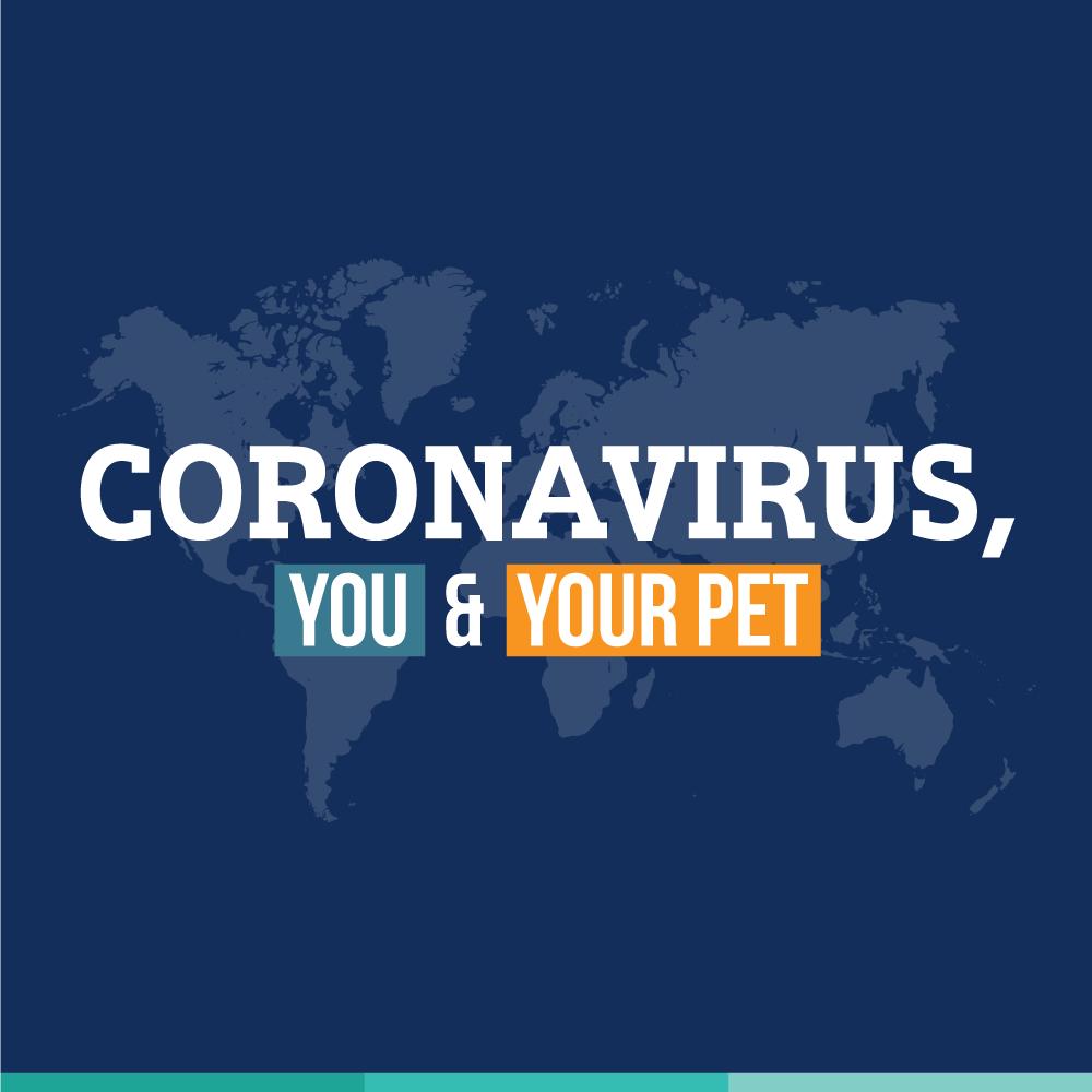 Coronavirus, You, and Your Pet