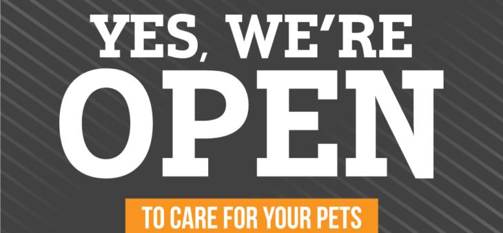 Coronavirus Updates - Goshen Animal Clinic