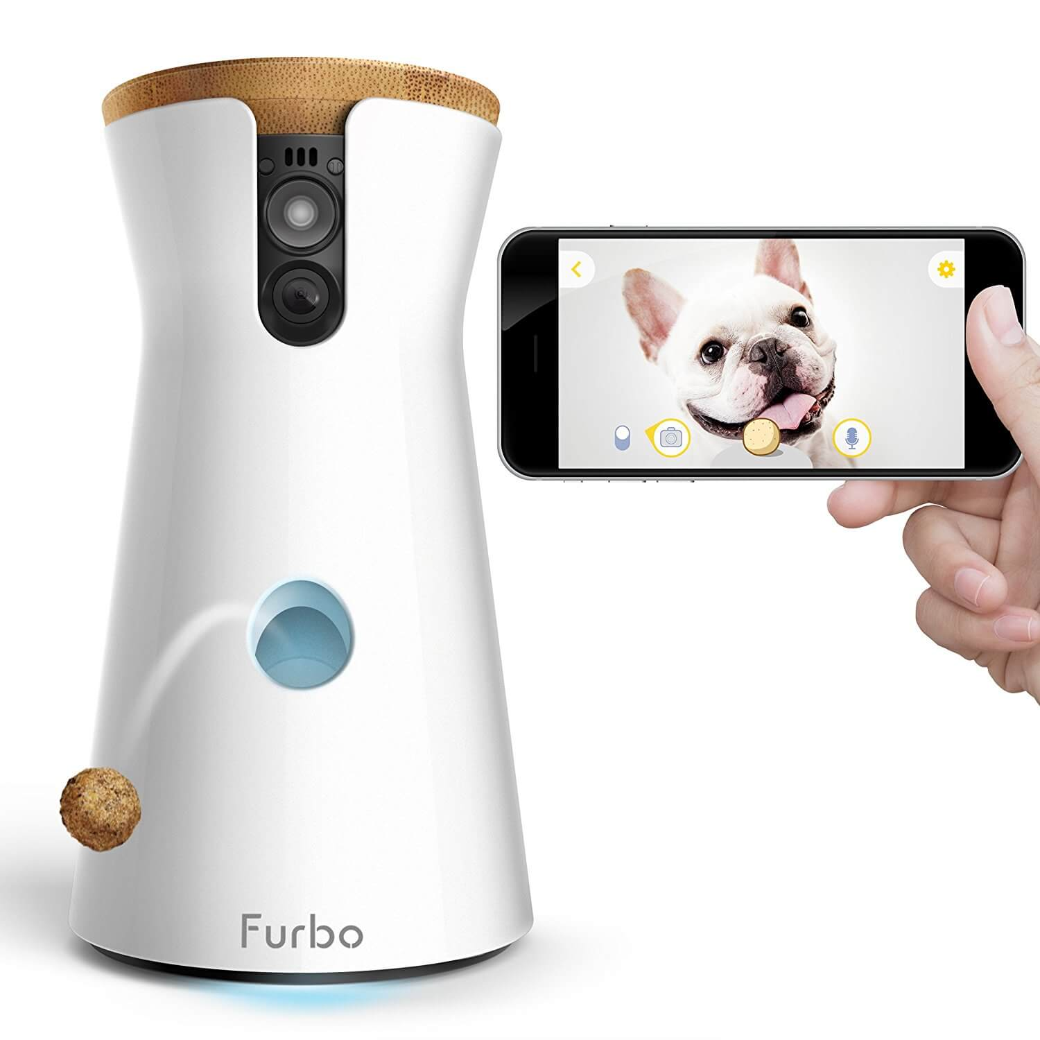 Win a Furbo Treat Dispenser - Goshen Animal Clinic