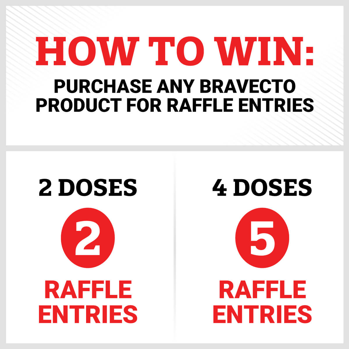 Purchase Any Bravecto Product For A Chance To Win